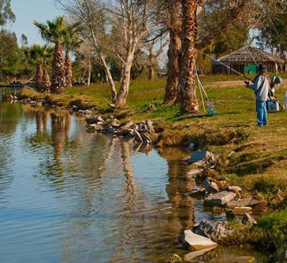 Fishing Drew Lake